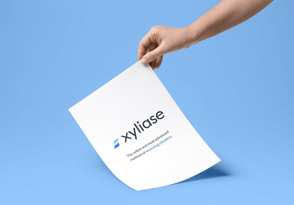 Xyliase - Web & UI/UX Design, Brand Identity